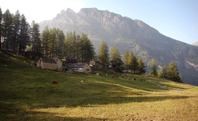 Alpjen