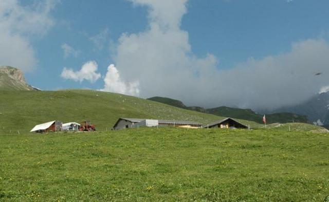 Alpe Obergalm