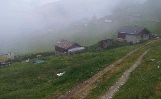 Alpe Brischeru
