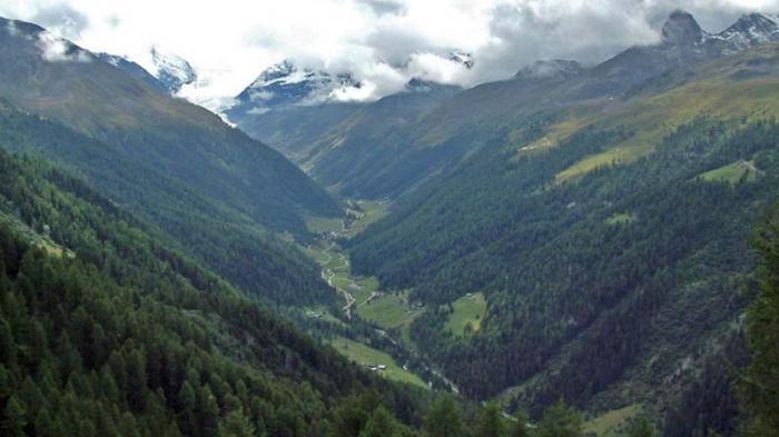 turtmanntal-besuch-auf-der-alpe-blueomatt-47955